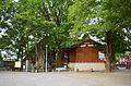 Iwagami-no-tobiishi-3.JPG