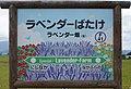 JR Furano-Line Lavender-Farm Station-name signboard.jpg