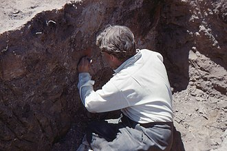 James Mellaart - Image: James Mellaart excavating a mural in Çatalhöyük