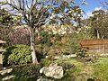 Japanese Friendship Garden (Balboa Park, San Diego) 24 2016-05-14.jpg