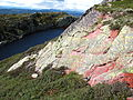 Jaspis Telemark Norway.jpg