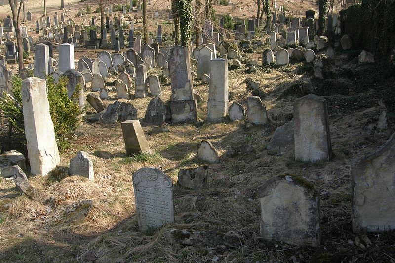 File:Jewish cemetery (Boskovice)4.JPG