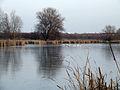 Jeziorograbowskie.jpg
