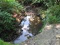 Křivoveský potok, v Krámském.jpg