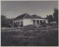 KITLV - 7800 - Kurkdjian - Soerabaja - Company house of the sugar company De Maas at Panarukan - circa 1910.tif