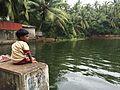 Kaippanal Kulam, Kaippanal Pond, Kaimalasseri.jpg