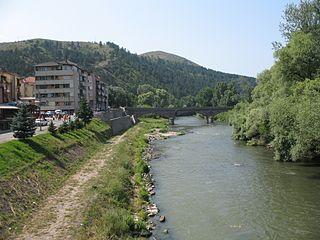 Ibar (river)