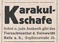 Karakulschafe der Universität Halle, Anzeige 1930.jpg