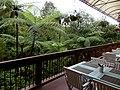 Kinabalu Park, Ranau, Sabah, Malaysia - panoramio (1).jpg