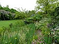 Kingstone Cottage Garden - geograph.org.uk - 805886.jpg