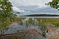 Kivivuorenlahti by Keihäsniemi in Luhanka, Central Finland, 2021 June.jpg