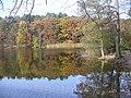 Krumme Lanke - Herbst im Grunewald (Autumn in the Grunewald) - geo.hlipp.de - 29958.jpg