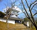 Kururicastle-outside-march2012.jpg