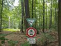 Lüßwald Unterlüß.JPG