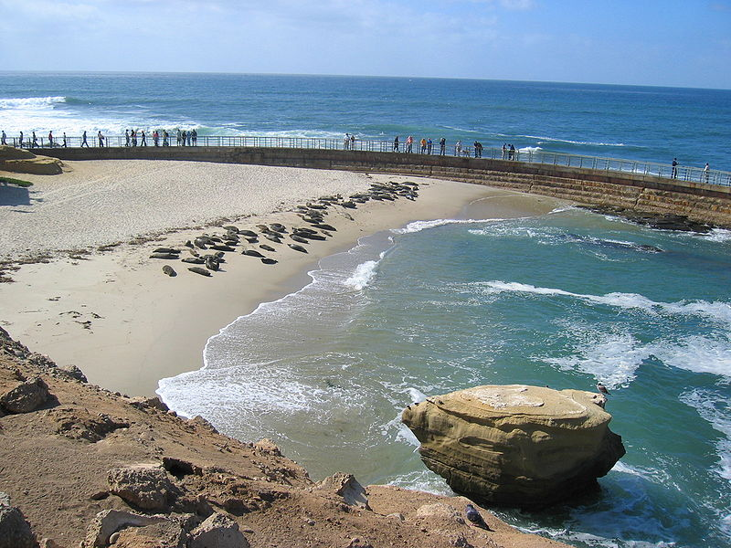 Dosiero:LaJolla childrenspool.JPG