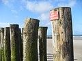 La plage - panoramio (8).jpg