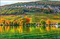 Lac de Bienne - panoramio.jpg
