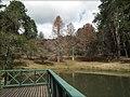 Lago das Carpas, Horto Florestal. - panoramio.jpg