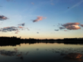 Lake Burkett at dusk.png
