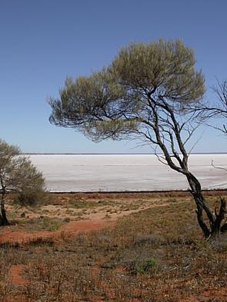 Lake Eyre basin - Lake Hart is one of the smaller lakes in the basin