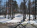 Lake Poinsett State Park Harrisburg AR 2014-03-08 004.jpg