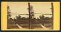 Lake Winnipesaukee, from Senter House Piazza, Centre Harbor, N.H, by Soule, John P., 1827-1904.png