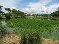 Lake near Kuthodaw Pagoda.jpg