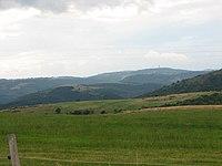 Landscape-IMG 7029.JPG