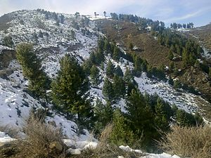 Lower Dir District - Laram top in winter lower Dir