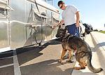 Law enforcement conducts K-9 water training 120918-F-TS228-014.jpg