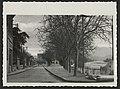 Le quai des marrronniers (34331856860).jpg