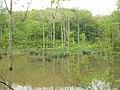 Leonard Springs 3 - panoramio.jpg