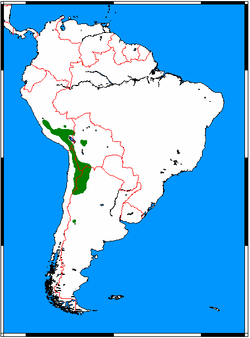 Leopardus jacobita range map.png