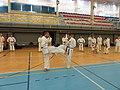 Letní soutředění Okinawa Karate a Kobudo ČFOKK 2017 02.jpg