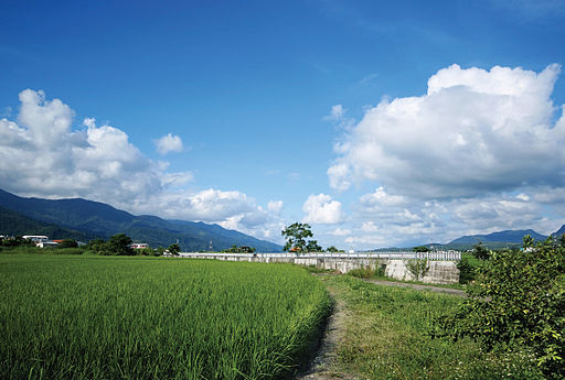 Lets Bike Taiwan 2009 – Scenic Views at Chishang, Hualien (3979308271)
