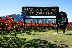 Napa Valley is most famous for its wine.
