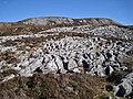 Limestone pavement on Bheinn Shuardail - geograph.org.uk - 2929724.jpg