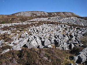 Geology of Skye - Durness Group dolostones forming a limestone pavement on Bheinn Shuardail