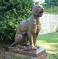 Lioness (RBG).jpg