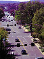 Looking Down Clinton Avenue.jpg