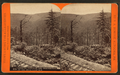 Looking through the wilderness, on the Bell's Gap R. R, by R. A. Bonine.png
