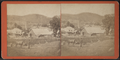 Looking west from the hill east of S. Husley's Hotel, by I. B. Stanton.png