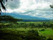 Los Llanos Orientales, al fondo la  Cordillera Oriental.