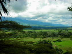 Los Llanos Colombia by David.png