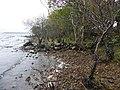 Lough shore at Rusheen Point - geograph.org.uk - 2133235.jpg
