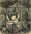 Louis Delaporte - Voyage d'exploration en Indo-Chine, tome 1 (page 95 crop).jpg