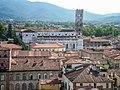 Lucca, Torre Guinigi zu S. Martino 2011-09.jpg