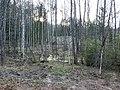 Mākoņkalna pagasts, Latvia - panoramio - BirdsEyeLV (11).jpg