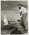 Macquarie Island, 1955. A wandering albatross and its chick. These birds are very tame and seem to like human company (6433730453).jpg