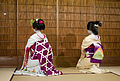 Maiko and geisha back.jpg